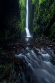 The Oneonta and only Oneonta Gorge in Columbia River Gorge Oregon sorry for the terrible pun