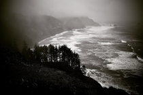 The Oregon coast is equally beautiful in winter OC  x