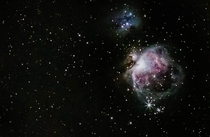 The Orion nebula from my Bortle  backyard