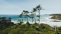 The Outliers Tofino British Columbia   x