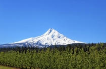 The Pacific Northwest is a special place Mount Hood OR