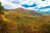 The painted landscape of the Great Smokey Mountains in October
