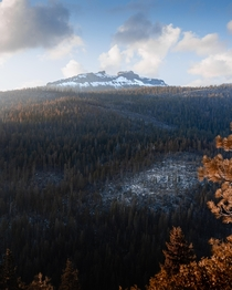 The perfect season does exist Stanislaus National Forest California