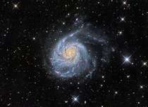 The Pinwheel Galaxy M