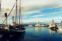 The port of Husavik Iceland