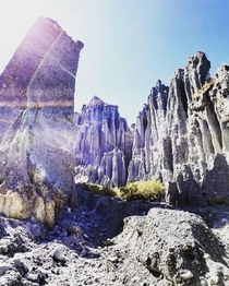 The Putangirua Pinnacles New Zealand where they shot The Return of the King