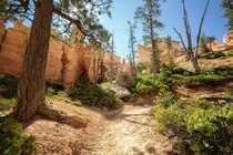 The Queensland Trail - Bryce Canyon National Park Utah