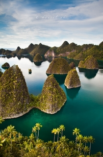 The Raja Ampat Islands of Papua Photo by Daniel Ab