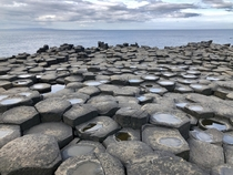 The rare beauty of the Giants Causeway Country Antrim Northern Ireland