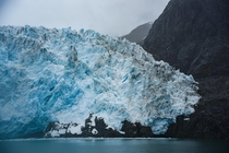 The receding yet still magnificent Aialik Glacier in Kenai Fjords National Park Alaska
