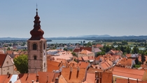 The red roofs of Ptuj Slovenia