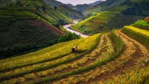The rice field terraces of Thailand