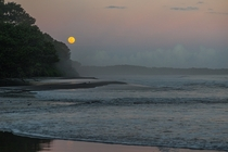 The Rising Full Moon Brings the High Tide Espiritu Santo Vanuatu
