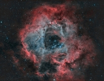 The Rosette Nebula a combination of five NGC objects NGC  NGC  NGC  NGC  and NGC