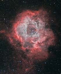 The Rosette Nebula NGC  is at the edge of a large molecular cloud in Monoceros some  light years away The lovely symmetric shape is sculpted by the winds and radiation from its central cluster of hot young O-type stars