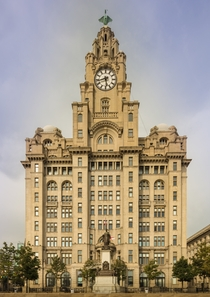 The Royal Liver building in Liverpool England