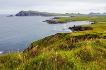 The rugged coast of the Dingle Peninsula the westernmost edge of Ireland