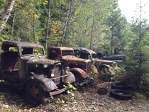 The ruins of a depression-era lumber mill in Oregon The mill was abandoned after several lumber trucks fell off of its narrow roads