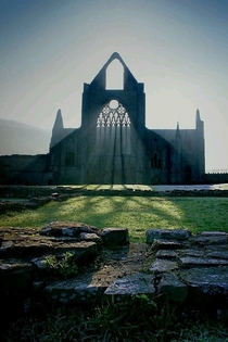 The ruins of Tintern Abbey Tintern Monmouthshire Wales
