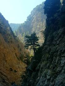 The Samaria Gorge Crete