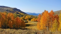 The seasons roll on by Mono County CA