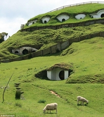 The Shire Lord of the Rings abandoned movie set in New Zealand becomes home to sheep and cattle