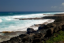 The shore of Kaena Point    OC