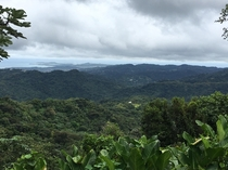 The side of Puerto Rico most tourists dont see - El Yunque National Forest