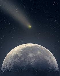 The size of comet NEOWISE relative to the Moon as observed from Earth