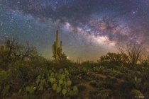 The Sonoran Desert during peak night sky viewing conditions - Arizona