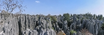 The Stone Forest near Shilin China