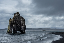 The stone giant Hvtserkur a m high basalt stack in north Iceland  hedbergphotos