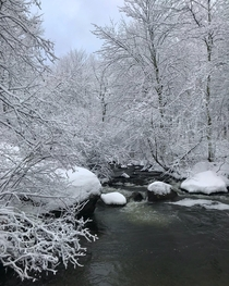 The stream of winter dreams Grafton NH OC x