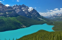 The stunning Peyto Lake in AlbertaCanada