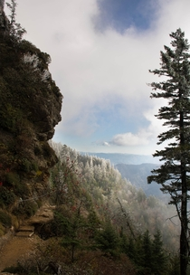 The stunning views in Great Smoky Mountain National Park are breath taking this time of year Taken on Alum cave trail descending Mt LeConte