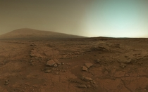 The surface of Mars as seen by the Curiosity Rover
