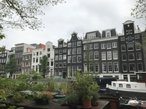The surprisingly green city of Amsterdam