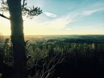 The Swedish Forrest captured from Taberg Jnkping x
