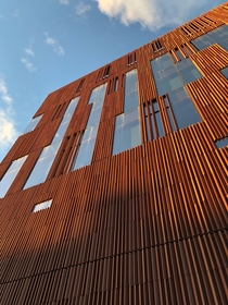 The terracotta facade on the University of Michigans Biological Sciences Building by Ennead Architects and Longoton