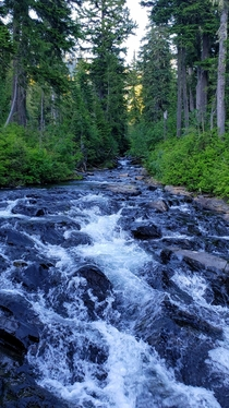 The top of Narada Falls at Mt Rainier NP
