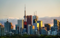 The Toronto skyline looking over the Don Valley painted in sunlight