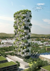 The Tower of Cedars ft is the first vertical evergreen forest in the world