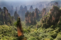 The towers of Zhangjiajie China  by Roggn