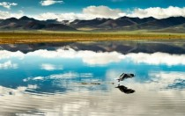 The tranquility and beauty of Tibet