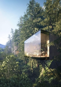 The treehouse reimagined Germany  Matthias Arndt