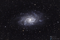 The Triangulum Galaxy shot with a Canon Ti