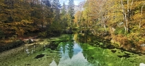 The turquoise waters of the Savica stream right before it flows into Lake Bohinj in the Julian Alps NW Slovenia -