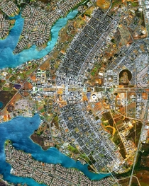 The urban design of Brasilia resembling an airplane from above Image by Maxar