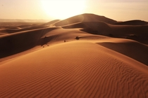 The vastness and size of the sand dunes are unbelievable Sahara Desert Morocco