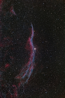 The Veil Nebula  Photographed by Johannes Schedler